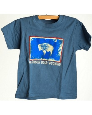 TEE SHORT SLEEVE WY FLAG DISTRESSED